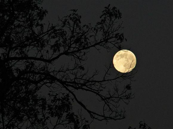 Заговоры на убывающую луну для избавления от нищеты и безденежья