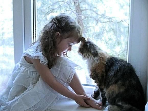 Заговоры избавят от аллергии и ребенка и взрослого